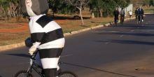 "Durante pedalada matinal em Brasília, Dilma ""foge"" de pixuleco"