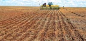 Plantio de soja está atrasado devido à falta de chuvas em MT