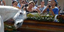 Cavalo comove família de vaqueiro morto ao 'se despedir' do dono na PB