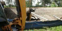 Vaca quebra telhado e cai em esgoto em Cáceres